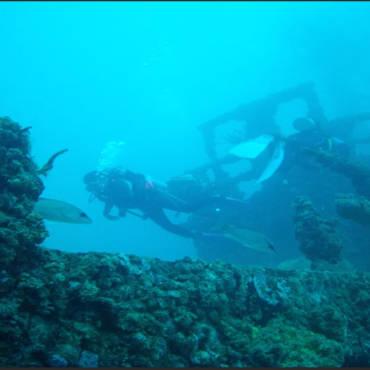 Spiegel & Duane Dives